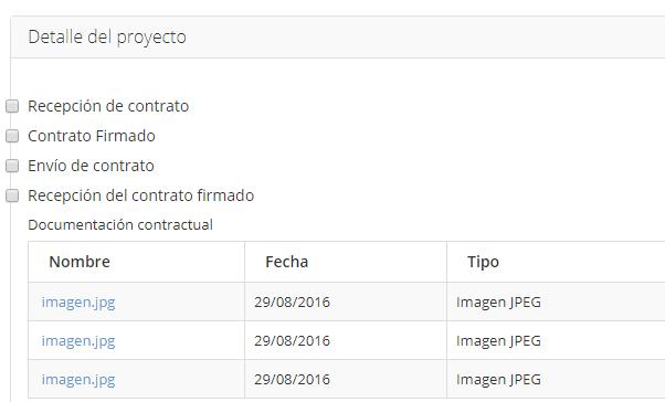 detallegestionproyectos.png